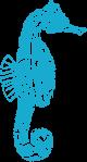 Seahorse Symbol